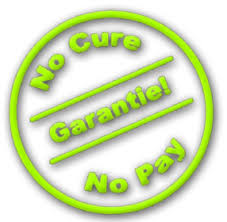 garantie no cure no pay